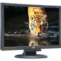 CTL 196UW 19 Inch Widescreen LCD Monitor: Black w/ Speakers Main Picture